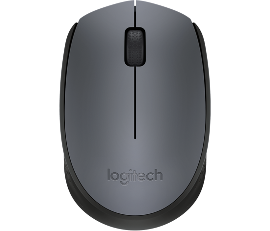 Picture of Logitech M170